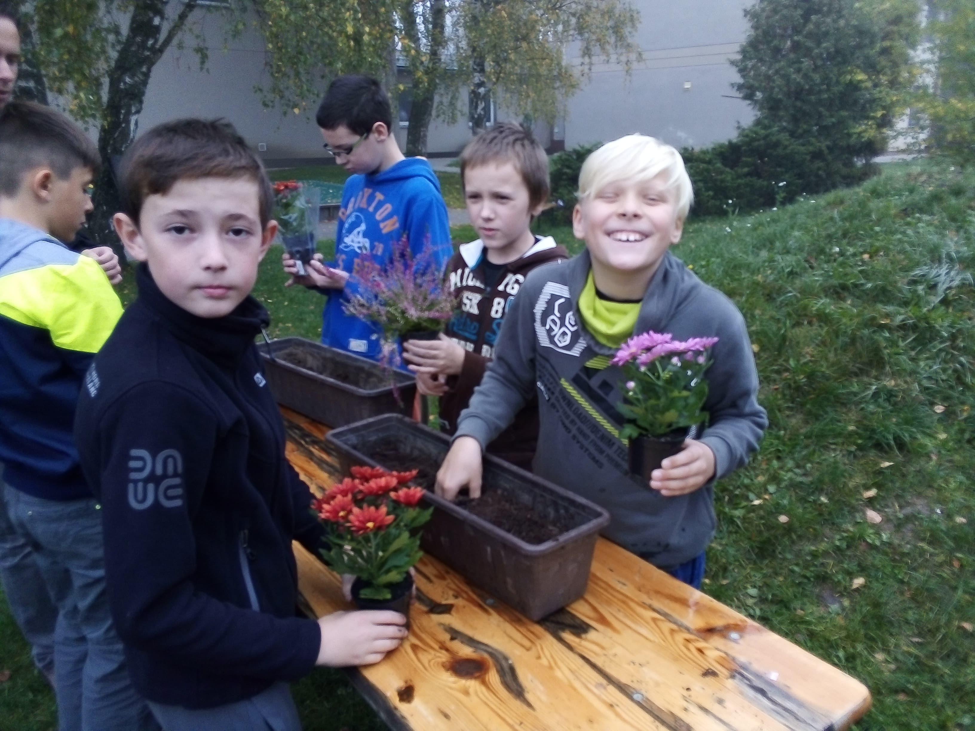 Sázení podzimních květin 2019 foto z činnosti